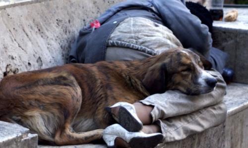 Χέρι βοηθείας στους αστέγους από τον δήμο Καλλιθέας - Ξαναζούν έχοντας στέγη & εργασία